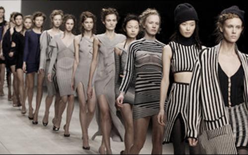 Fashion Business Data Industry Intelligence
