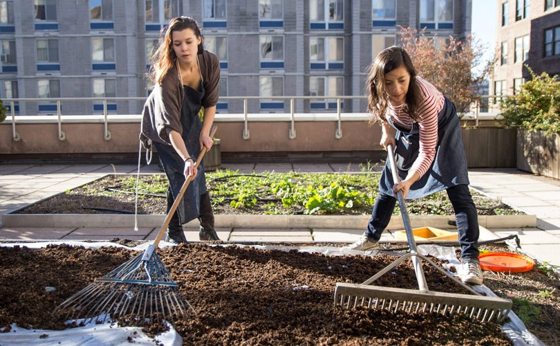 Fashion Institute of Technology students turn used muslin into compost