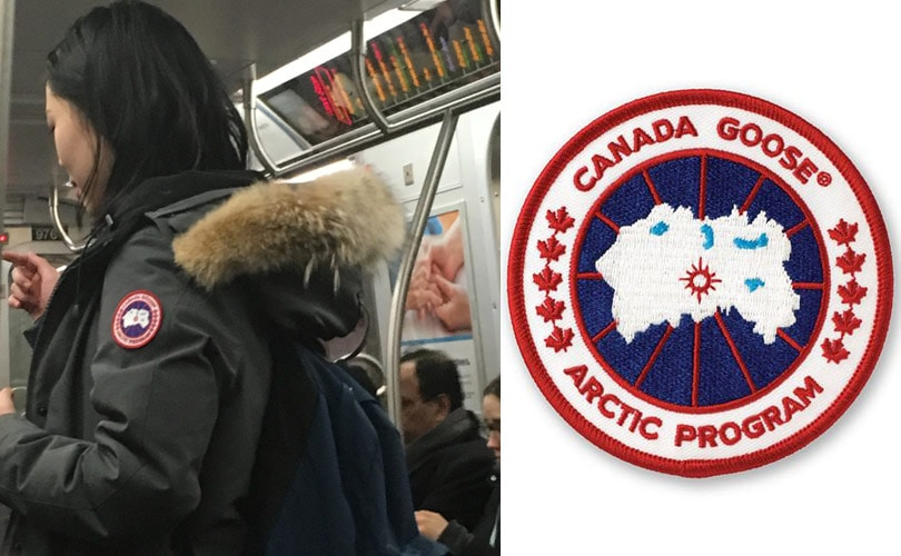 The Unfashionable Status Of Canada Goose