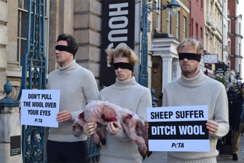 Peta urges menswear designers to not pull 'the Wool' over their Eyes